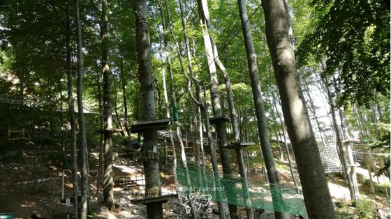 Parco avventura_Instancabile giramondo2