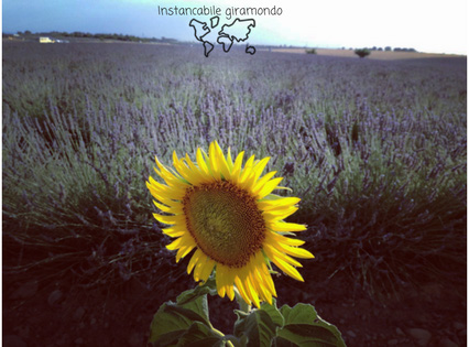 Provence_Instancabile giramondo_edited